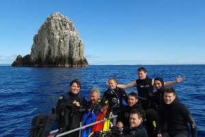 Sugarloaf - Poor Knights Islands