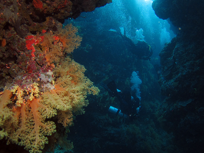 Divers in caves and smim throughs