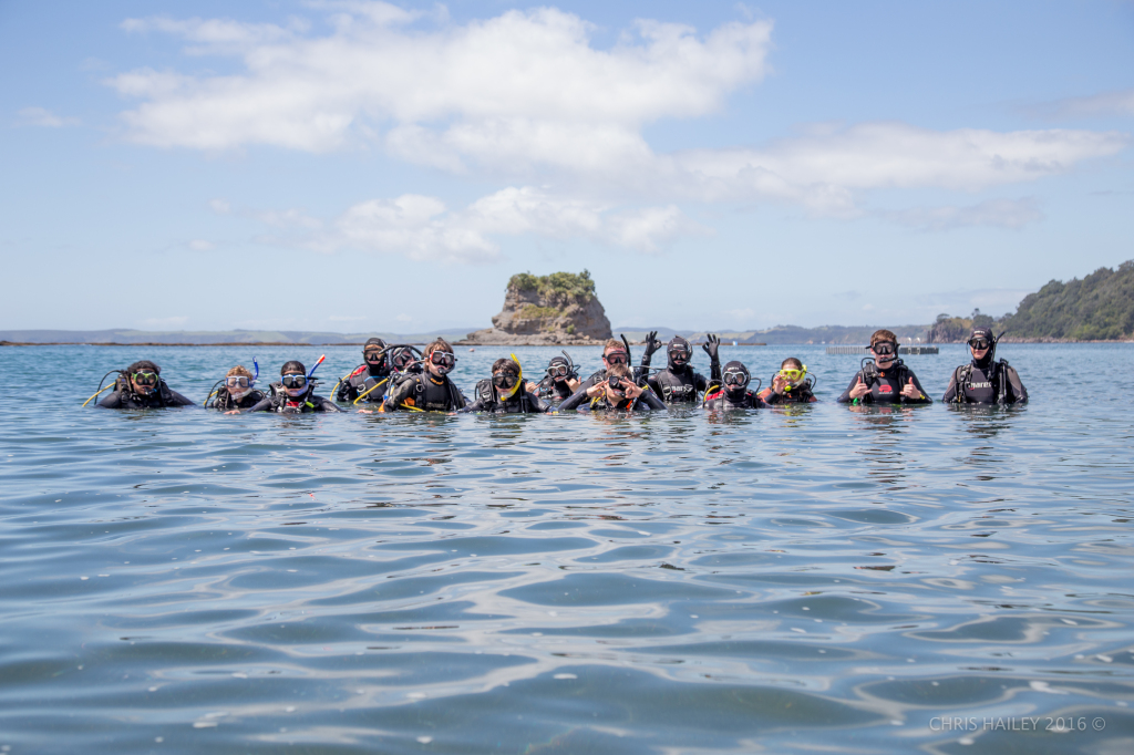 open water course auckland
